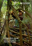 KEEPING REDD+CLEAN: a step by step guide to preventing corruption